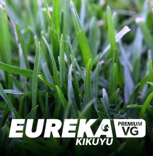 EUREKA KIKUYU TURF / VG / VILLAGE GREEN / PREMIUM | SELF REPAIR | TOUGH | DROUGHT TOLERANT | LAWN SOLUTIONS |SOFT LEAF | INSTANT LAWN