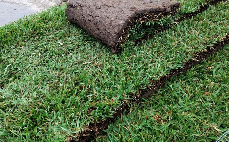 instant lawn installation melbourne