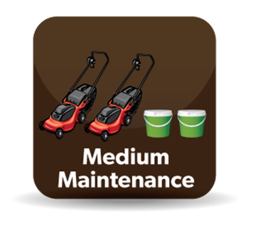 Medium Maintenance