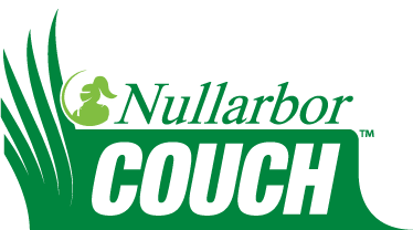 Nullarbor Couch santa anna couch